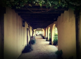 winery-pic-1